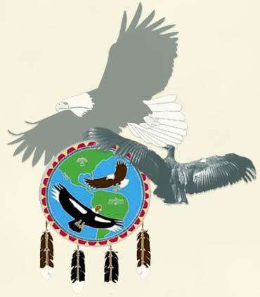 EagleCondor